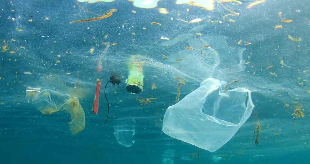 Blog 10 Big Environmental Reasons to Change From Sanitary Pads to Menstrual Discs